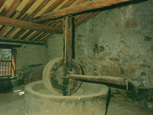 The Olive Press of Saint Luke